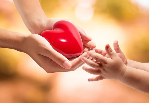 heart-in-hands-small-500x348